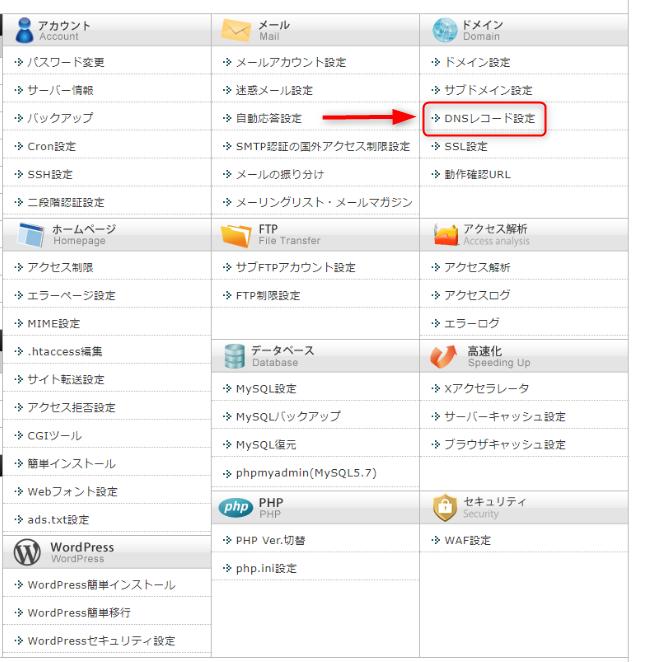 「DNSレコード設定」をクリック